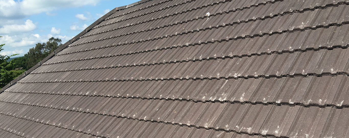 Roof repairs Exeter